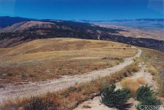 0 Vac/Vic Johnson Dr/Leadhill Drive, Leona Valley, CA 93551 (#SR19268948) :: Z Team OC Real Estate