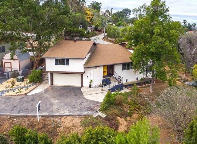 8734 Glenira Ave, La Mesa, CA 91941 (#190062365) :: Z Team OC Real Estate