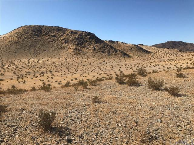 0 Vacant/Unknown, 29 Palms, CA 92277 (#BB19268549) :: J1 Realty Group