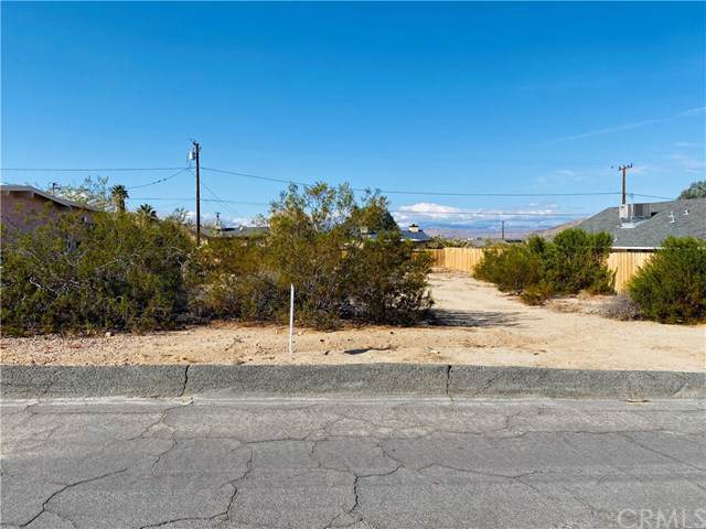 0 Pine Spring Avenue, 29 Palms, CA 92277 (#JT19269764) :: Sperry Residential Group