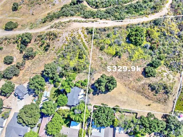 2 Wildwood Canyon Rd, Newhall, CA 91321 (#SR19271222) :: Sperry Residential Group