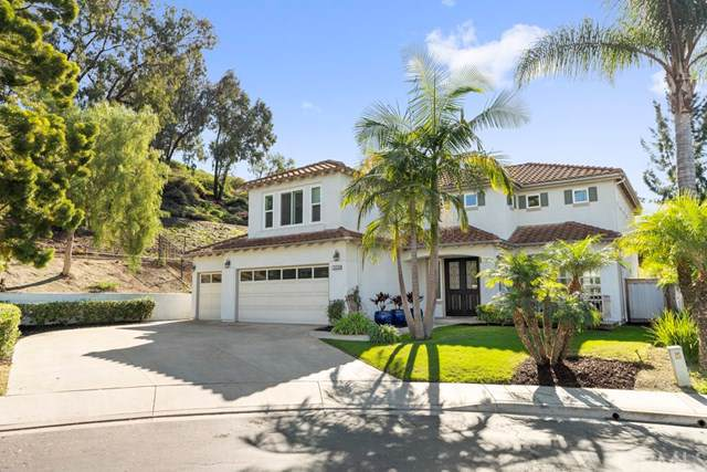 209 Gurrego, San Clemente, CA 92672 (#OC19270897) :: Sperry Residential Group