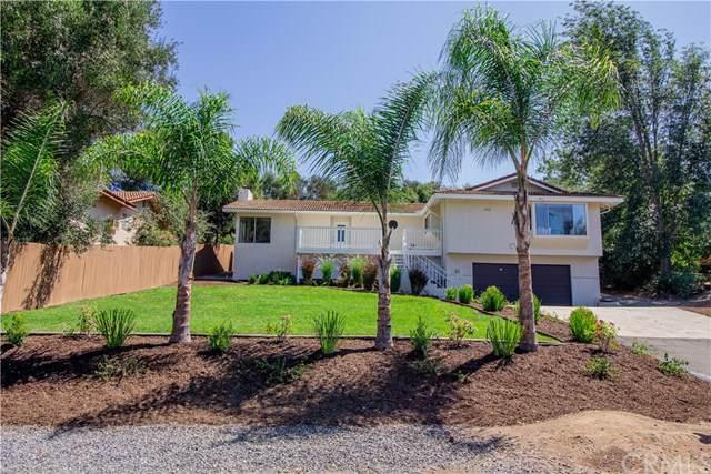 1805 Chapulin Lane, Fallbrook, CA 92028 (#SW19271580) :: Mainstreet Realtors®