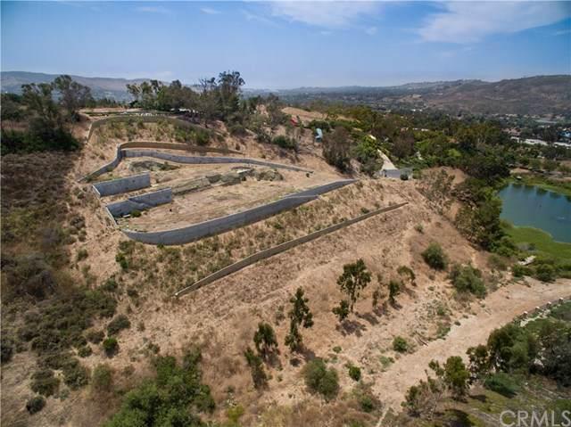 26922 Paseo Cardero, San Juan Capistrano, CA 92675 (#LG19270949) :: Rogers Realty Group/Berkshire Hathaway HomeServices California Properties