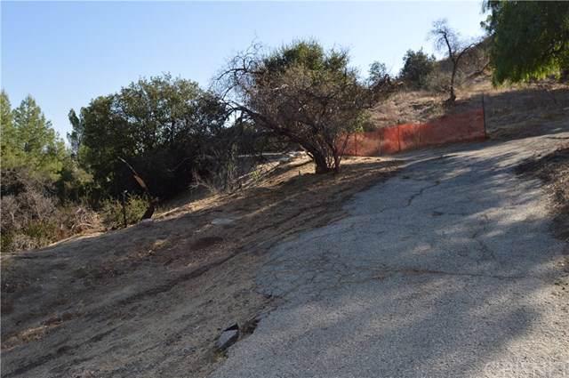 11435 Veranda Dr, Kagel Canyon, CA  (#SR19271779) :: Sperry Residential Group
