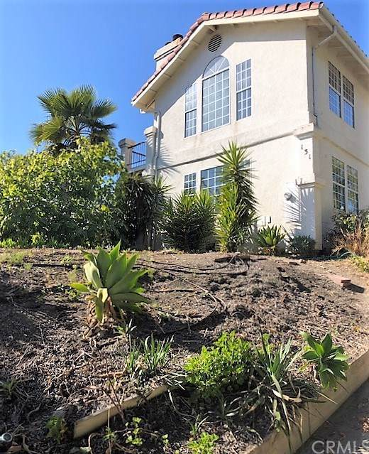 131 Trinity Avenue, Arroyo Grande, CA 93420 (#SP19271348) :: Sperry Residential Group