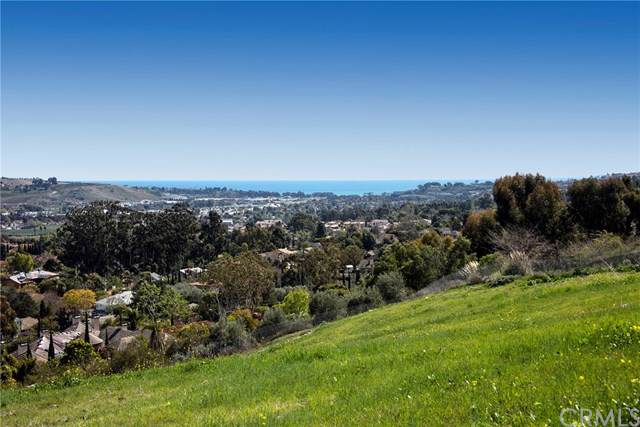 31641 Peppertree Bend, San Juan Capistrano, CA 92675 (#NP19272314) :: Sperry Residential Group