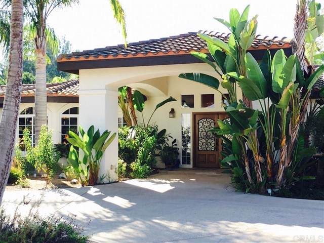 17412 La Brisa, Rancho Santa Fe, CA 92067 (#190063228) :: Faye Bashar & Associates
