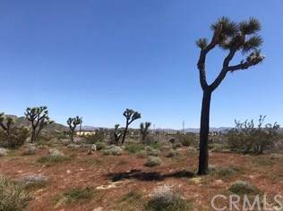 0 Vacant Land, Yucca Valley, CA  (#OC19273102) :: RE/MAX Masters