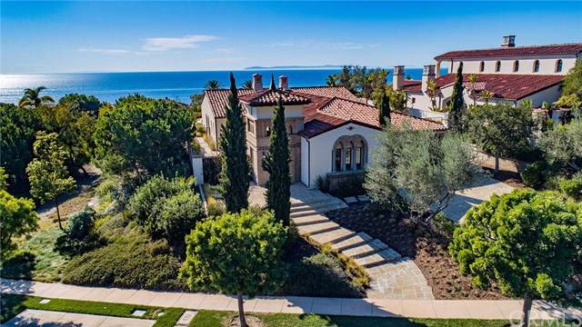 64 Archipelago Drive, Newport Coast, CA 92657 (#OC19273885) :: Allison James Estates and Homes
