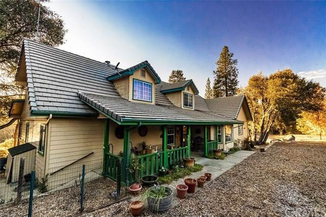40328 River View Place, Oakhurst, CA 93644 (#FR19274045) :: Z Team OC Real Estate