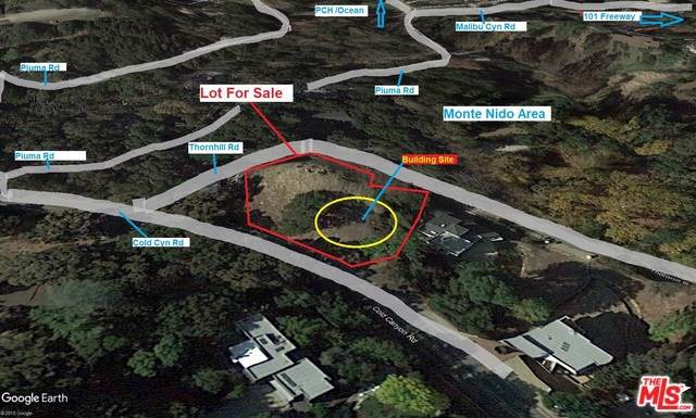 641 Thornhill Road Road, Calabasas, CA 91302 (#19533806) :: Fred Sed Group