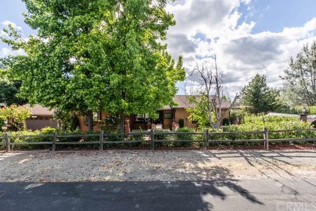 4655 Silver Saddle Lane, Paso Robles, CA 93446 (#NS19273972) :: Allison James Estates and Homes