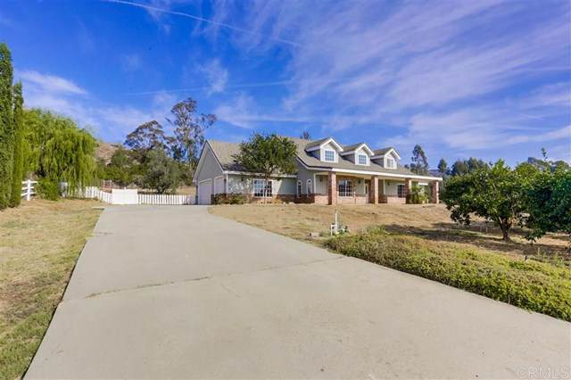 1021 Capra Way, Fallbrook, CA 92028 (#190063595) :: The Costantino Group   Cal American Homes and Realty