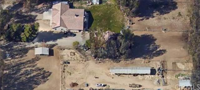 30338 Stein Way, Hemet, CA 92543 (#SW19275058) :: Allison James Estates and Homes