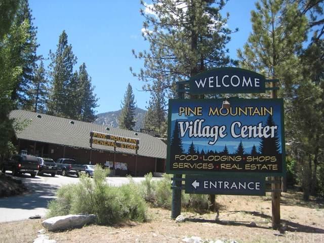 2824 Kodiak Way, Pine Mountain Club, CA 93222 (#SR19275210) :: Z Team OC Real Estate