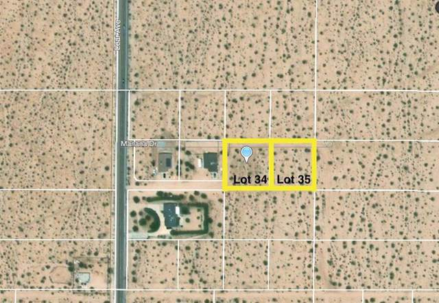 64 Manana Drive, 29 Palms, CA 92277 (#219034910PS) :: Sperry Residential Group