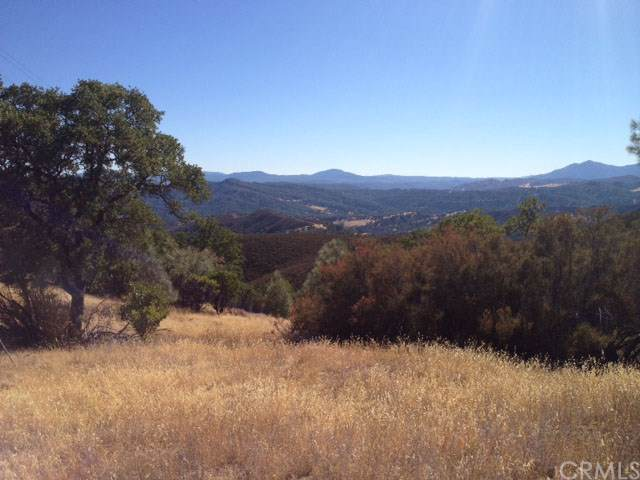 21489 Meriann Drive, Clearlake Oaks, CA 95423 (#LC19275898) :: J1 Realty Group