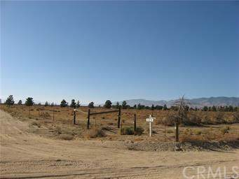 0 Vac/235 Stw Drt /Vic Avenue A4, Fairmont, CA 93536 (#BB19276368) :: J1 Realty Group
