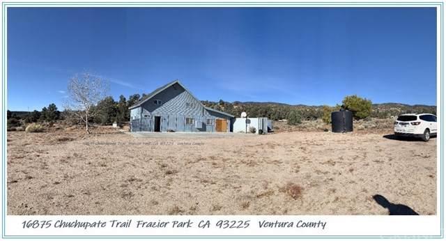 16875 Chuchupate Trail, Frazier Park, CA 93225 (#SR19274119) :: Allison James Estates and Homes