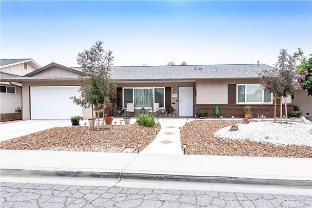 1161 Sandlewood Drive, Hemet, CA 92543 (#SW19274604) :: Allison James Estates and Homes