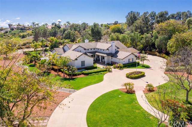 4085 Keri Way, Fallbrook, CA 92028 (#OC19275802) :: Blake Cory Home Selling Team