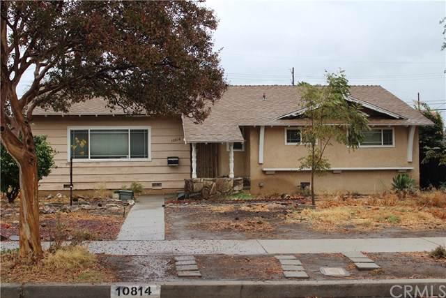 10814 Dempsey Avenue, Granada Hills, CA 91344 (#SB19273465) :: Fred Sed Group