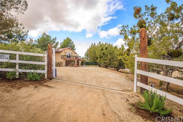 10324 Carroll Lane, Agua Dulce, CA 91390 (#SR19276529) :: Twiss Realty
