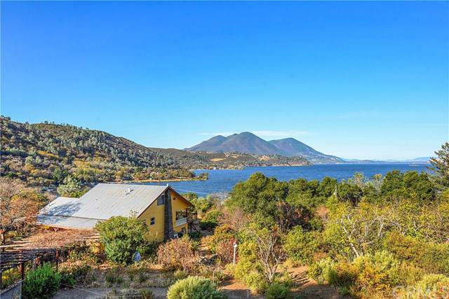 13028 Park Drive, Lower Lake, CA 95457 (#LC19274546) :: RE/MAX Masters