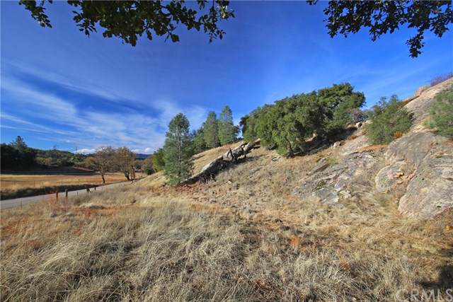 4040 Las Pilitas Road, Santa Margarita, CA 93453 (#NS19274739) :: J1 Realty Group