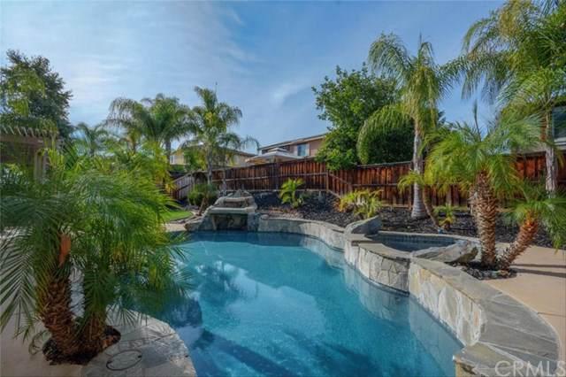 29057 Hydrangea Street, Murrieta, CA 92563 (#WS19277243) :: Allison James Estates and Homes