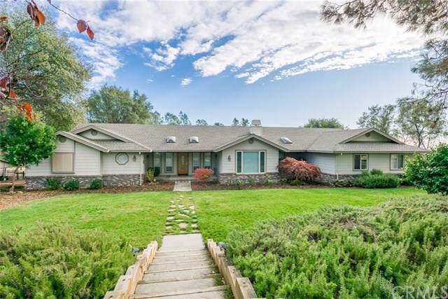 4644 Calernbar Road, Paradise, CA 95969 (#SN19277127) :: RE/MAX Empire Properties