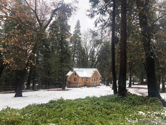 21928 Crestline Road, Palomar Mountain, CA 92060 (#190064298) :: Cal American Realty