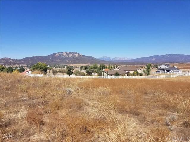 448 Comanche, Aguanga, CA  (#SW19248915) :: Steele Canyon Realty