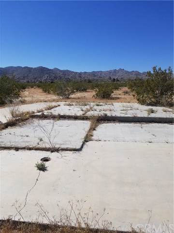 6353 Cascade Road, Joshua Tree, CA 92252 (#SW19277709) :: Sperry Residential Group