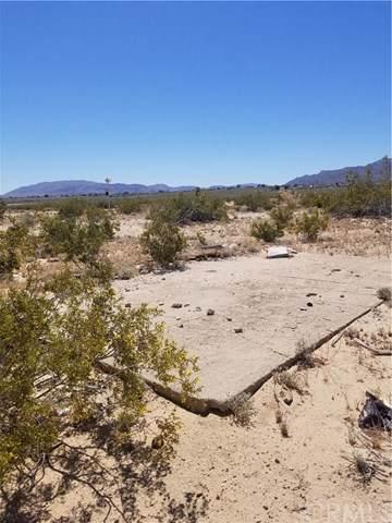 123 Mesquite Springs Road - Photo 1