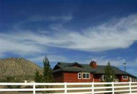 60040 Jeraboa Road, Mountain Center, CA 92561 (#219035031DA) :: Sperry Residential Group
