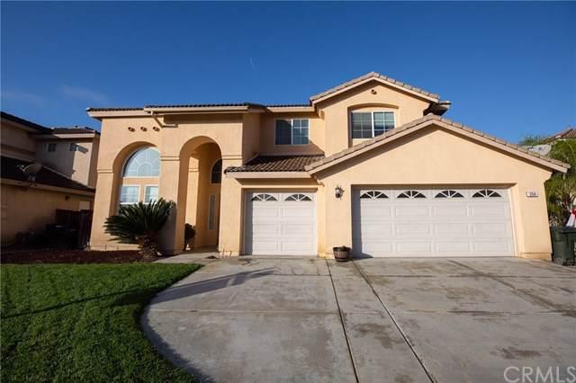 254 Galiceno Drive, San Jacinto, CA 92582 (#SW19277939) :: Allison James Estates and Homes