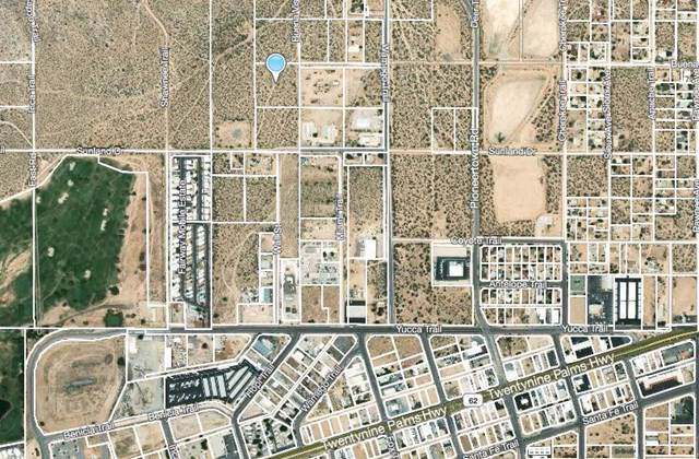 61 Buena Vista Drive, Yucca Valley, CA 92284 (#219035210PS) :: Sperry Residential Group