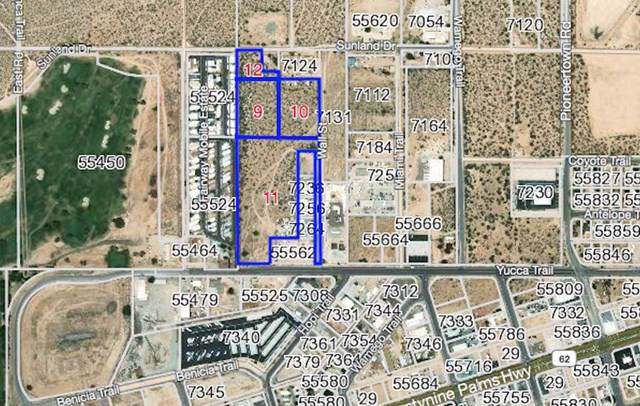 55546 Yucca Trail, Yucca Valley, CA 92284 (#219035209PS) :: Sperry Residential Group