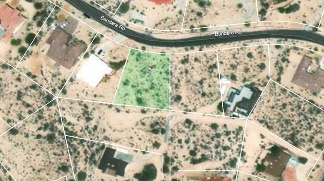 65 Bandera, Yucca Valley, CA 92284 (#219035207PS) :: RE/MAX Empire Properties