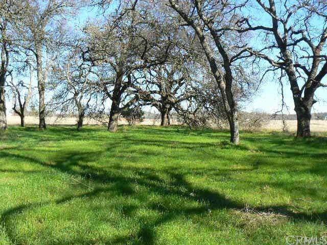 0 Cox Lane, Oroville, CA 95966 (#SN19279414) :: The Laffins Real Estate Team