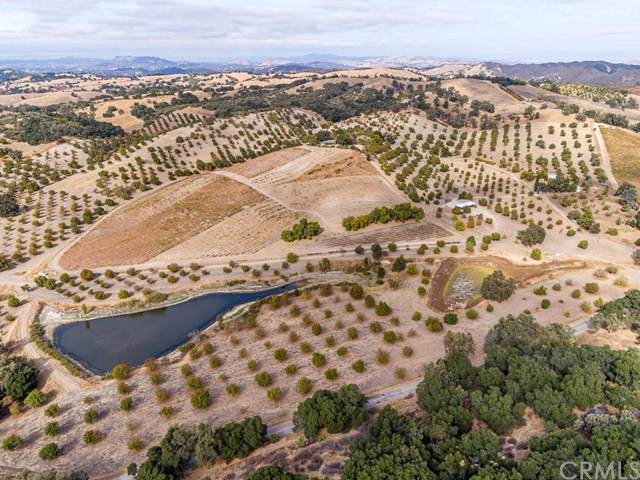 9570 Chimney Rock Road, Paso Robles, CA 93446 (#NS19279518) :: Sperry Residential Group