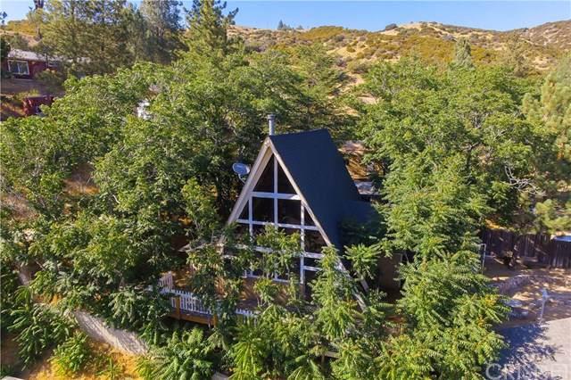 17720 Valley Trail, Lake Hughes, CA 93532 (#SR19279609) :: RE/MAX Estate Properties