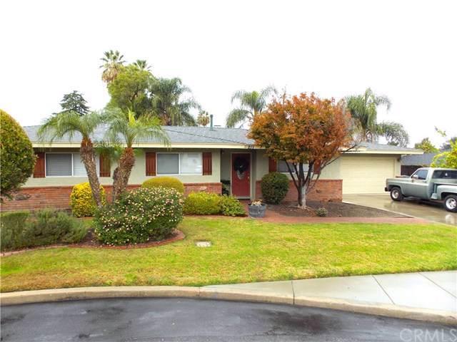 217 Phlox Avenue, Redlands, CA 92373 (#EV19279208) :: Sperry Residential Group
