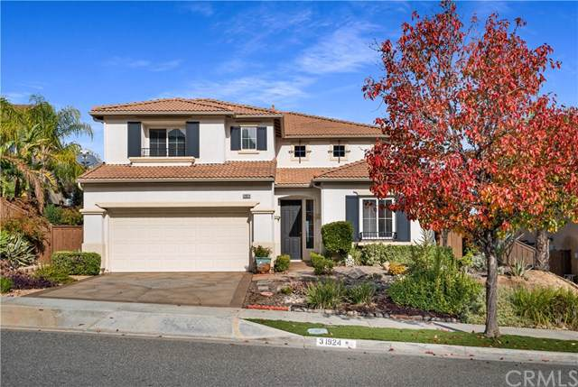 31924 Cedarhill Lane, Lake Elsinore, CA 92532 (#IV19280497) :: Brenson Realty, Inc.