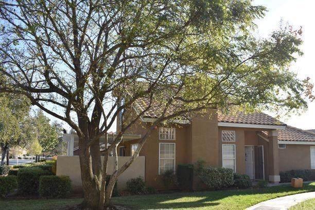 1100 Hogan Avenue, Banning, CA 92220 (#EV19280540) :: Allison James Estates and Homes
