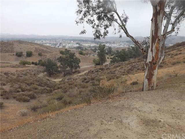 1987 Sunnyslope Avenue, Lake Elsinore, CA  (#SW19280858) :: Brenson Realty, Inc.