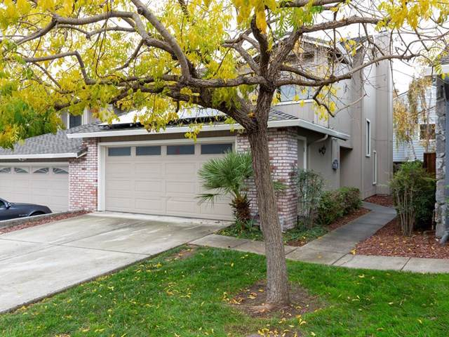 49 Bright View Lane, Outside Area (Inside Ca), CA 95076 (#ML81777347) :: RE/MAX Parkside Real Estate