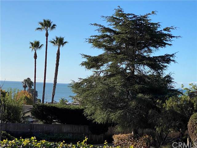 153 El Portal Drive, Pismo Beach, CA 93449 (#PI19281391) :: Sperry Residential Group